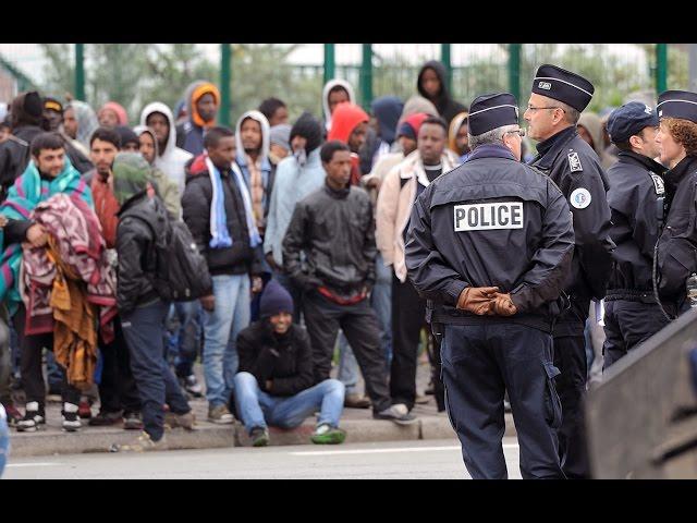 На фото: Шокодрама від Ульріха Зайдля, або Вся правда про життя емігрантів, автор: admin