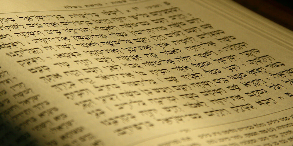 На фото: Всё, что вы хотели знать о современном иврите (актуальное интервью), автор: admin