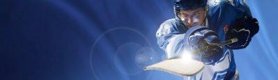 На фото: Ставки на спорт - хоккей, автор: admin
