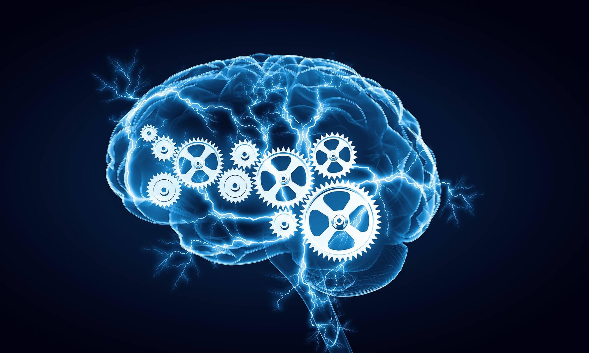 На фото: Когнитивная психология современных азартных игр, автор: admin